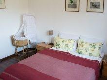 Accommodation Győr-Moson-Sopron county, Bíbor-lak Apartment