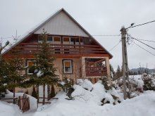 Guesthouse Bodoș, Pingvin Guesthouse