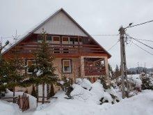 Vendégház Madéfalva (Siculeni), Pingvin Ház