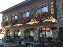 Panzió Sospatak (Șeușa), Pension Norica