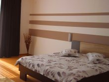 Accommodation Găujani, Dan Apartment