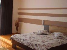 Accommodation Lintești, Dan Apartment