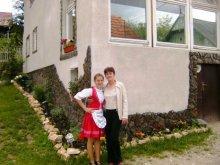 Casă de oaspeți Agârbiciu, Pensiunea Monika