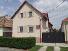 Cazare Dunasziget, Apartament Radek
