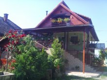 Accommodation Agrieș, Enikő Guesthouse