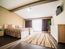Accommodation Gheorghe Doja, Sophia Guesthouse
