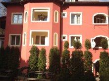 Villa Pârvu Roșu, Rosa Vila