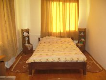 Accommodation Dimitrie Cantemir, Lary Hostel