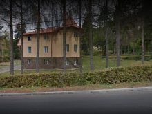Vilă Lunca Ilvei, Vila Onix