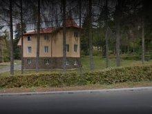 Vilă Mureșenii Bârgăului, Vila Onix