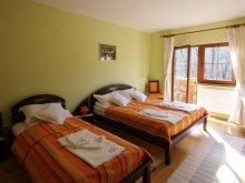 Accommodation Băile Balvanyos, Istvána Touristic Complex