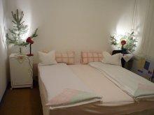 Accommodation Akasztó, Szegedi Magánszállás Apartment