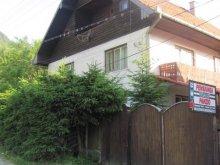 Villa Lădăuți, Vártető Panzió