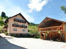 Panzió Valea Lungă-Cricov, Moecel Villa