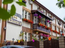 Accommodation Dumbrăvița, Bianca Guesthouse