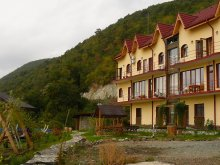 Accommodation Liborajdea, Delfinul Chalet