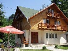 Pensiune Valea Largă-Sărulești, Pensiunea Madona