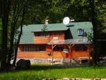 Accommodation Păuleni-Ciuc, Medvetalp Chalet
