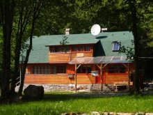 Accommodation Șicasău, Medvetalp Chalet