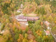 Hotel Dealu Pădurii, Hotel Ciobănașu