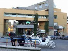 Szállás Radnaborberek (Valea Vinului), Silva Hotel