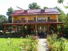 Accommodation Teodorești, Criveanu Guesthouse