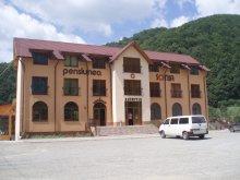 Accommodation Bistrița Bârgăului Fabrici, Sonia Guesthouse