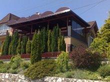 Panzió Dunasziget, Turul Panzió és Lejtő Club