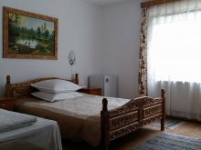 Accommodation Popeni (George Enescu), Cristal Guesthouse