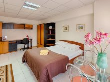 Accommodation Polcești, Studio Victoriei Square Apartment