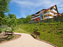 Accommodation Cotu (Cuca), Iulia Star Guesthouse