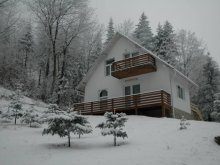Accommodation Gorovei, Cristal Vila B2