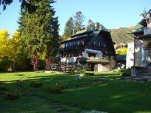 Villa Lacu Sinaia, Draga Villa