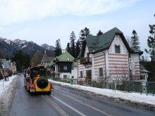 Vilă Ștefan cel Mare, Mountain View Villa