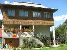 Accommodation Dealu Lămășoi, Sofia Guesthouse
