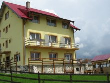 Panzió Felsőszombatfalvi üdülőtelep (Stațiunea Climaterică Sâmbăta), Pui de Urs Panzió