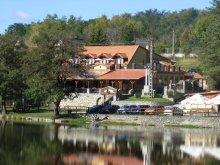Accommodation Mikófalva, Villa Tópart B&B