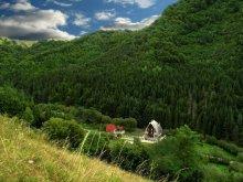 Pensiune Tomulești, Vila Ursul