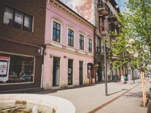 Hosztel Forgacskut (Ticu), Zen Boutique Hostel