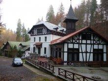 Hotel Mioarele (Cicănești), Hotel Stavilar