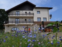Accommodation Valea Cetățuia, Șleaul Mândrului Guesthouse