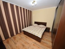 Accommodation Cuza Vodă (Salcia Tudor), Lorene Apartment