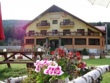 Bed & breakfast Mlăjet, White Horse Guesthouse