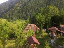 Pensiune Orgești, Pensiunea Valea Morii