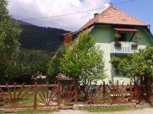 Panzió Bibarcfalva (Biborțeni), Panoráma Panzió