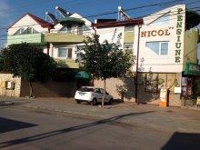Accommodation Plopu, Nicol Guesthouse
