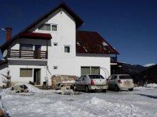 Accommodation Valea Muscelului, Valea Doamnei Guesthouse