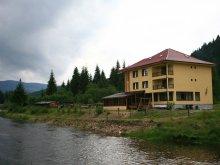 Panzió Bârlești (Scărișoara), Alex Panzió