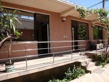 Accommodation Amzacea, Megalux House