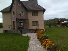 Vilă Golești (Ștefănești), Casa Luca Benga